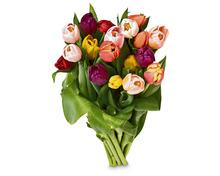 18 Tulpen