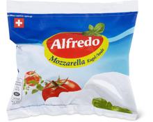 Alle Alfredo Mozzarella