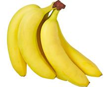 Bananen Rainforest Alliance