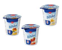 Bifidus Fruchtjoghurt