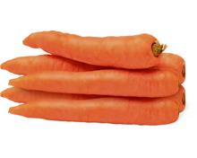 Bio-Karotten