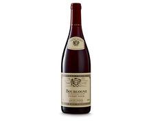 Bourgogne AOC Pinot Noir Louis Jadot 2017, 75 cl