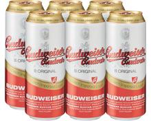 Budweiser Bier Original