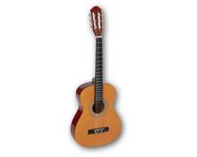 C. GIANT Gitarrenlern-Set