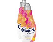 Comfort Concentrate Weichspüler Honeysuckle & Sandalwood
