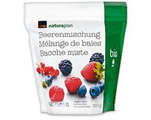 Coop Naturaplan Bio-Beerenmischung, tiefgekühlt, 3 x 300 g