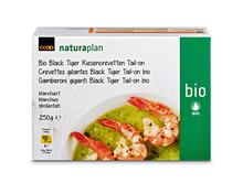 Coop Naturaplan Bio-Black Tiger Riesencrevetten, Tail-On, aus Zucht, Vietnam, tiefgekühlt, 2 x 250 g