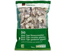 Coop Naturaplan Bio-Crevetten Black Tiger, roh, geschält, aus Zucht, Ecuador/Vietnam, tiefgekühlt, 800 g