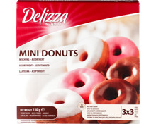 Delizza Mini Donuts