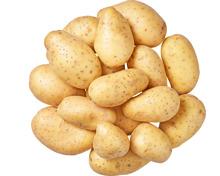 Denner Kartoffeln