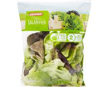 Denner Salat Salanova