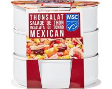 Denner Thonsalat Mexicain