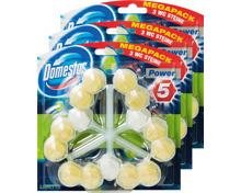 Domestos Power 5 WC-Block