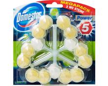 Domestos Power 5 WC-Steine