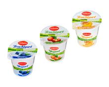 Fruchtgurt
