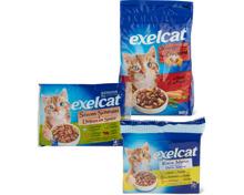 Gesamtes Exelcat-Katzenfutter- und -Dreamies-Katzensnack-Sortiment