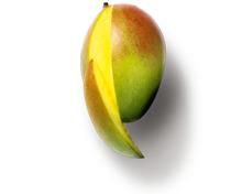 GOURMET Mango