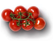 GOURMET Premium Cherry- Rispentomaten