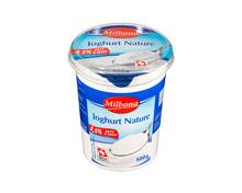 Joghurt nature
