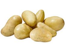 Kartoffeln Amandine