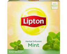 Lipton Tee Pfefferminze