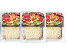 M-Classic Lasagne, 3er-Pack