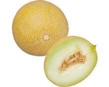 Melonen Galia