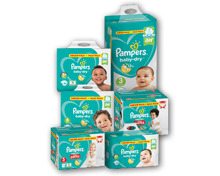 PAMPERS® Baby Dry Maxi Pack