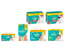 PAMPERS® BABY DRY WINDELN/ PANTS MAXI PACK