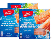Pelican Wildlachs-Filets im 3er-Pack, MSC