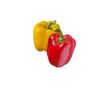 Peperoni rot/gelb