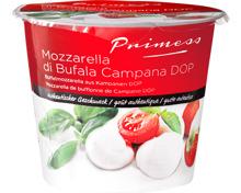 Primess Büffelmozzarella aus Kampanien DOP