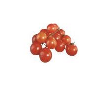 Ramati-Cherrytomaten