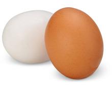 Schweizer Eier aus Freilandhaltung
