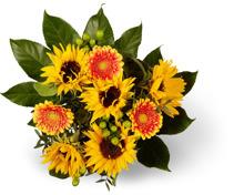 Sonnenblumenstrauss Fiona