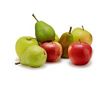 Tragtasche füllen mit Äpfeln und Birnen