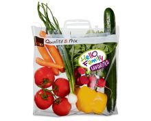 Tragtasche füllen mit Gurken, Radieschen, Peperoni, Rispentomaten, Karotten, Bundzwiebeln