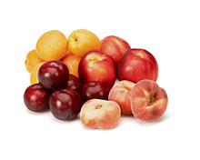 Tragtasche füllen mit Nektarinen, Pfirsichen, Aprikosen, Pflaumen