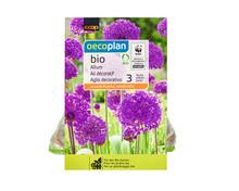 Z.B. Coop Oecoplan Bio-Zierlauch