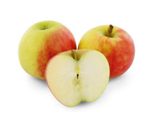 Apfel «Elstar»