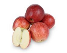 Apfel «Gala»