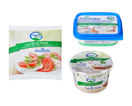 Bio Frischkäse lactosefrei