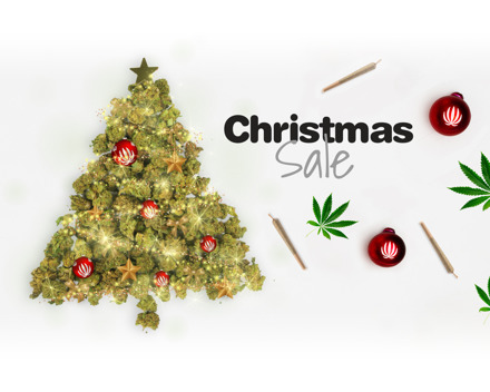 Christmas Sale! 30% auf die besten Schweizer CBD Produkte