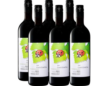 Coccinella Sangiovese/Merlot bio Marche IGP