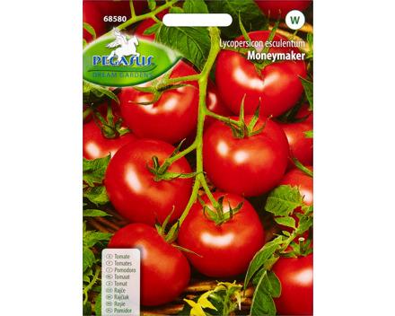 Gemüsesamen Tomate Moneymaker
