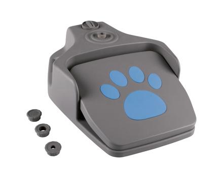 Hunde-Wasserfontäne (nur im Tessin)