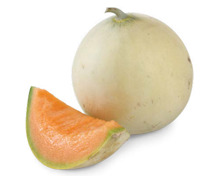 Melonen «Honeymoon»