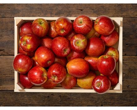 Rote Äpfel Braeburn