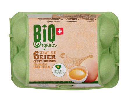 Schweizer Bio Freiland Eier